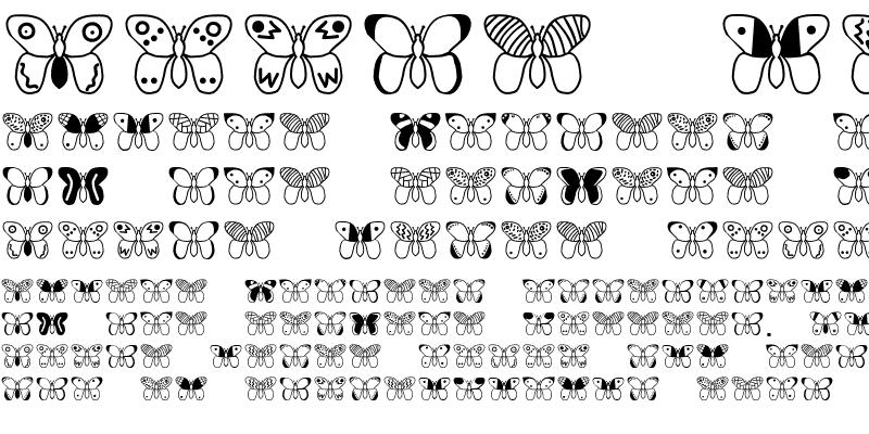 Sample of Papillon Becker