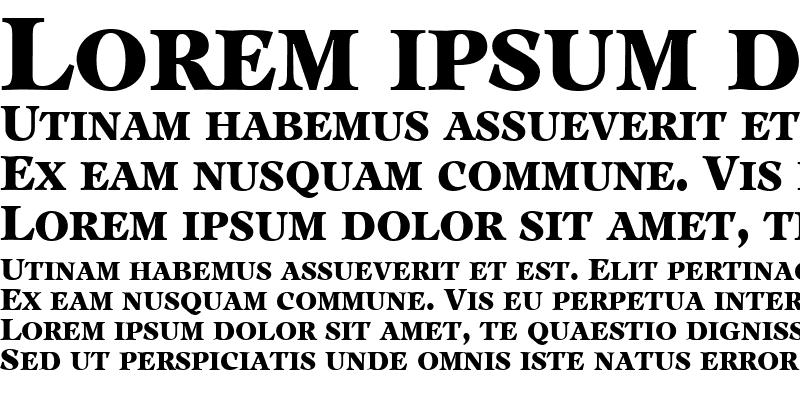 Sample of PeplumExpert