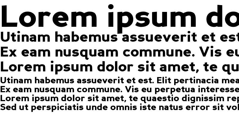 Sample of Perspective Sans Black Regular