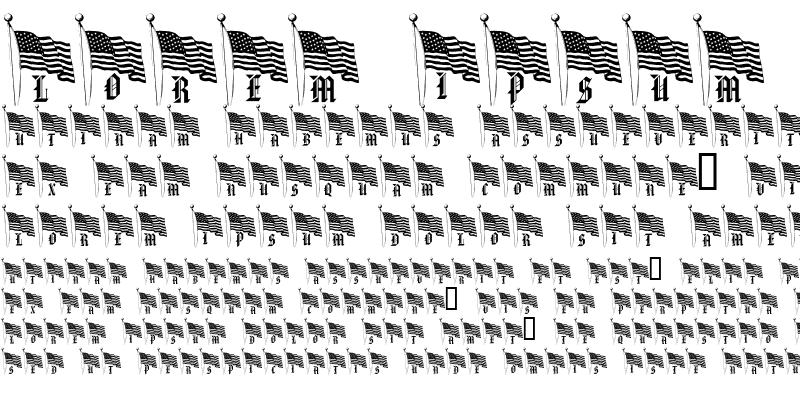 Sample of pf_our_flag Regular