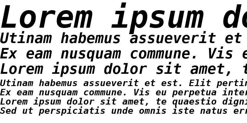 Sample of PrimaSansMono BT Bold Oblique