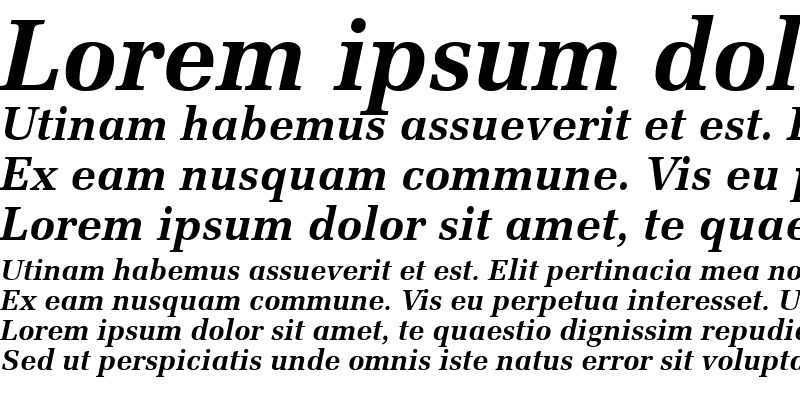 Sample of Protocol SSi Bold Italic