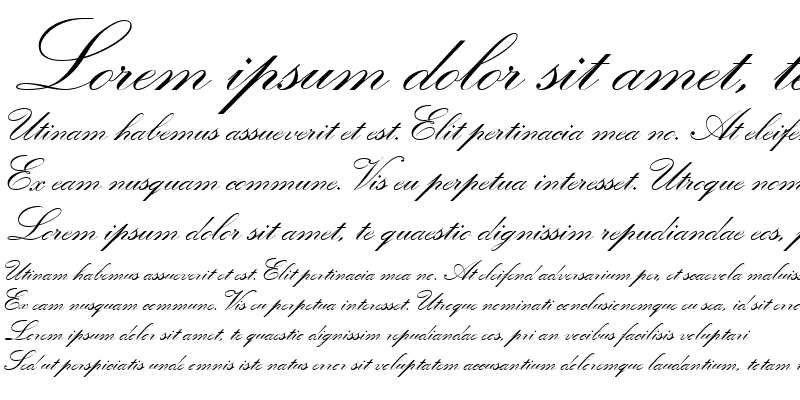 Sample of Quill Script SSi Bold
