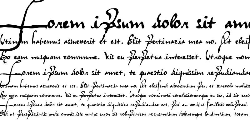 Sample of RegalloAPlaya