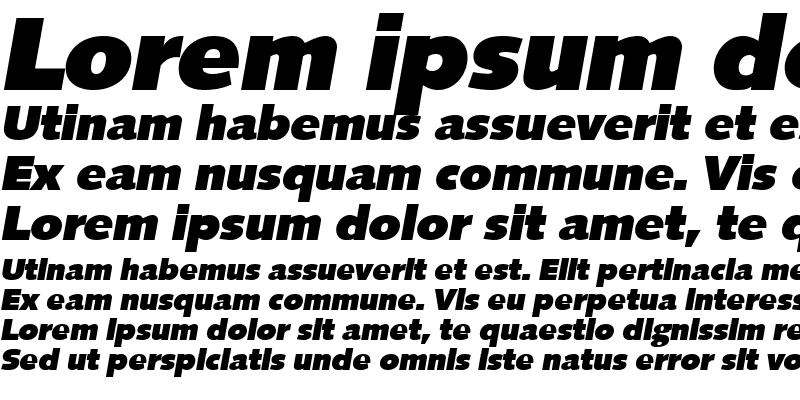 Sample of RogerBecker-Heavy Italic
