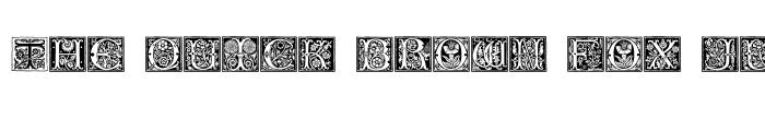 Preview of Romantique Initials Regular