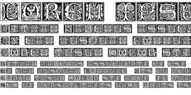 Sample of Romantique Initials Regular