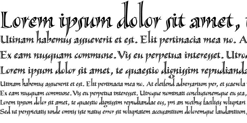 Sample of Sassafras-Lx