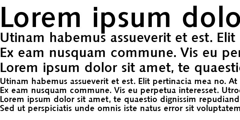 Sample of Saxony-Serial-Medium Regular