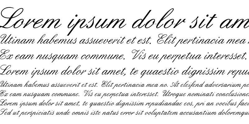 Sample of Script 33