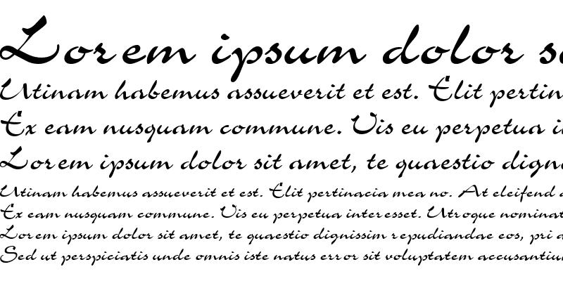 Sample of Script-C721