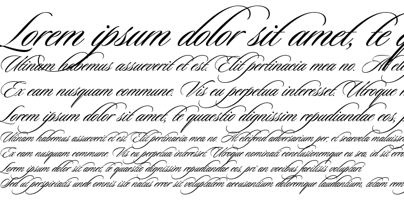 Sample of Sloop Script