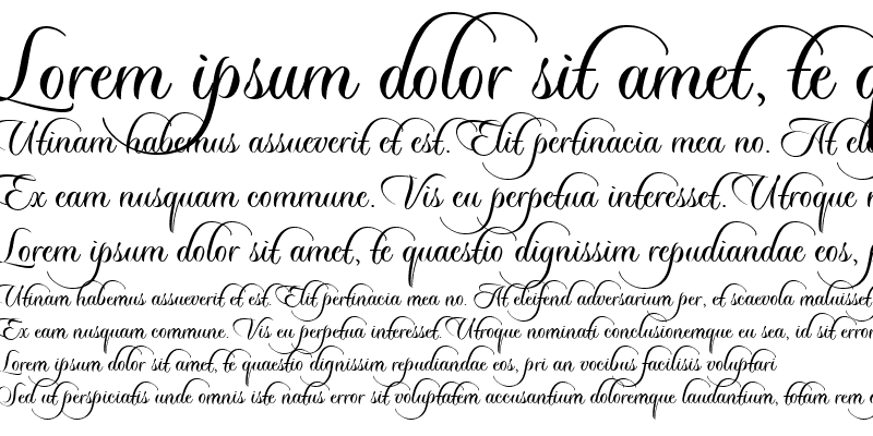 Sample of Sloop-ScriptThree (Upright)