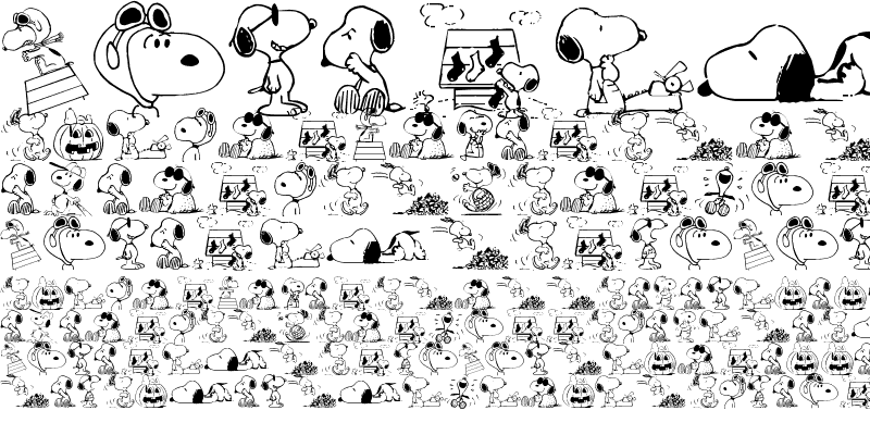 Sample of Snoopy Dings Regular