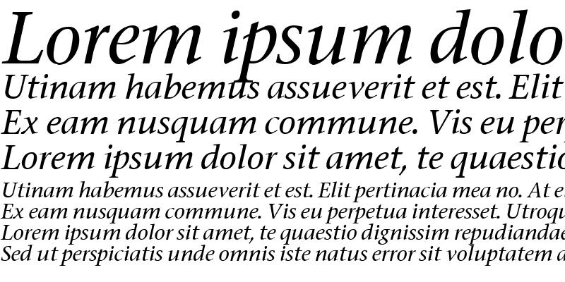 Sample of Stone Italic