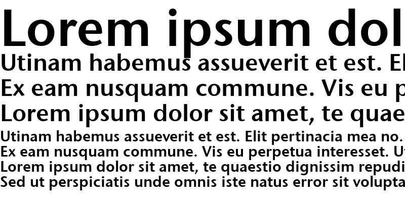 Sample of Stone Sans Sem ITC TT