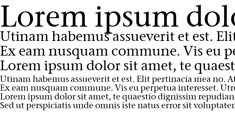 Sample of Stone Serif ITC TT