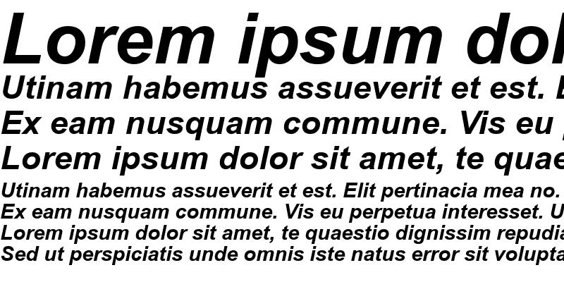 Sample of SUNA Arial Bold Italic
