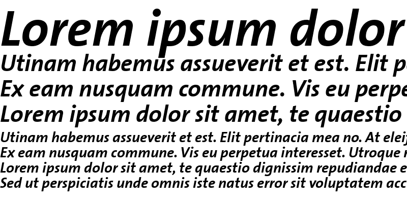 Sample of TheSans ItalicBold
