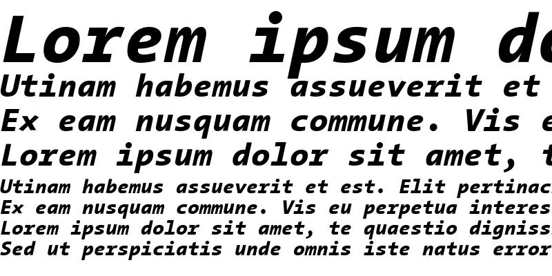 Sample of TheSans Mono ExtraBold Italic