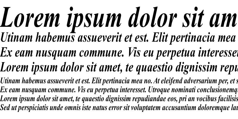 Sample of Times Roman Cn bold italic