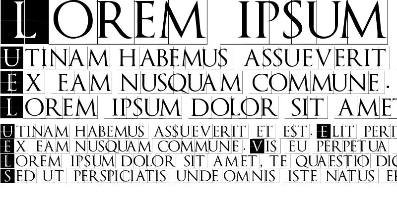Sample of TrajanusBriX-Invers Regular
