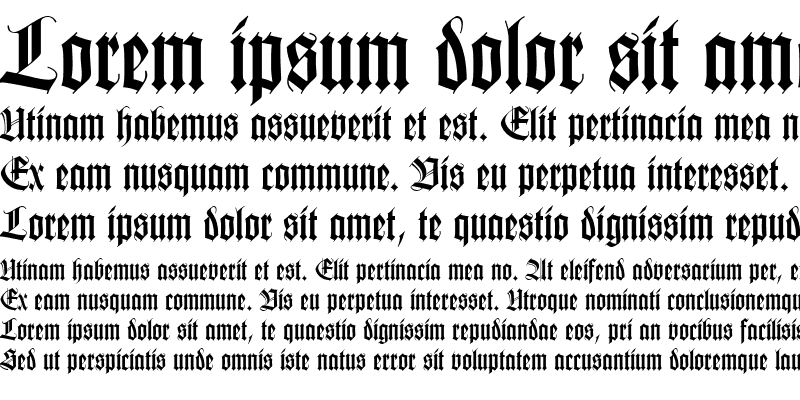Sample of Tudor SSi Bold