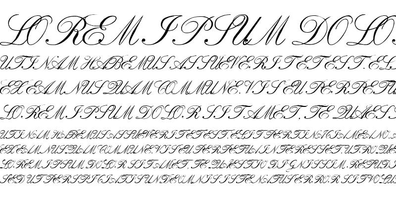 Sample of VI Bach Mai Hoa