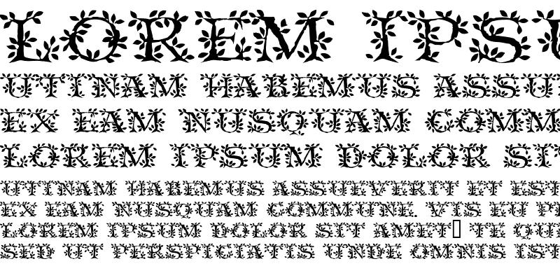 Sample of VineCapsSSi