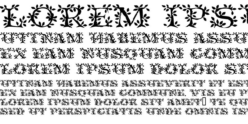 Sample of VineCapsSSK