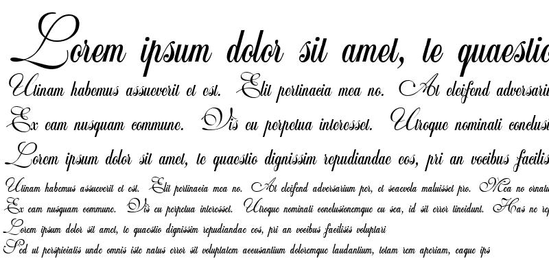 Sample of Wedding Script Bail