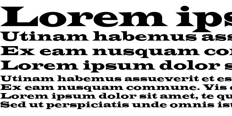 Sample of Wide Latin