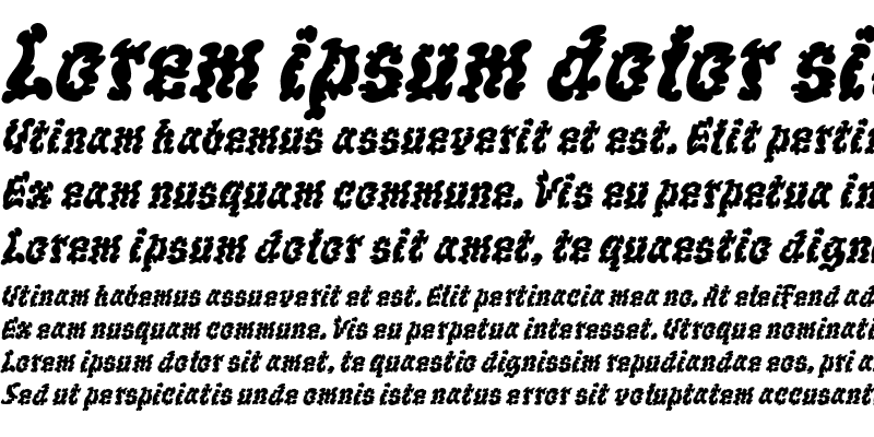 Sample of WILD1 Ruts Bold Italic