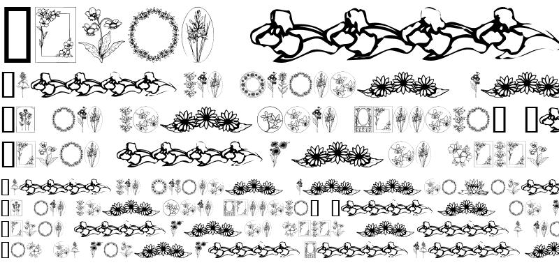 Sample of Wildflower IV